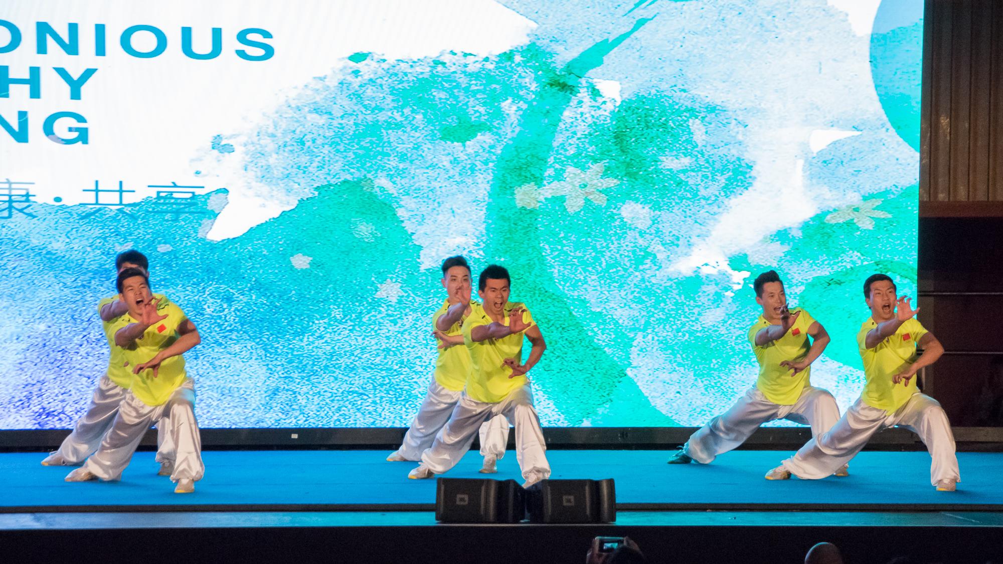 UN_Wushu_Performance_2017-8